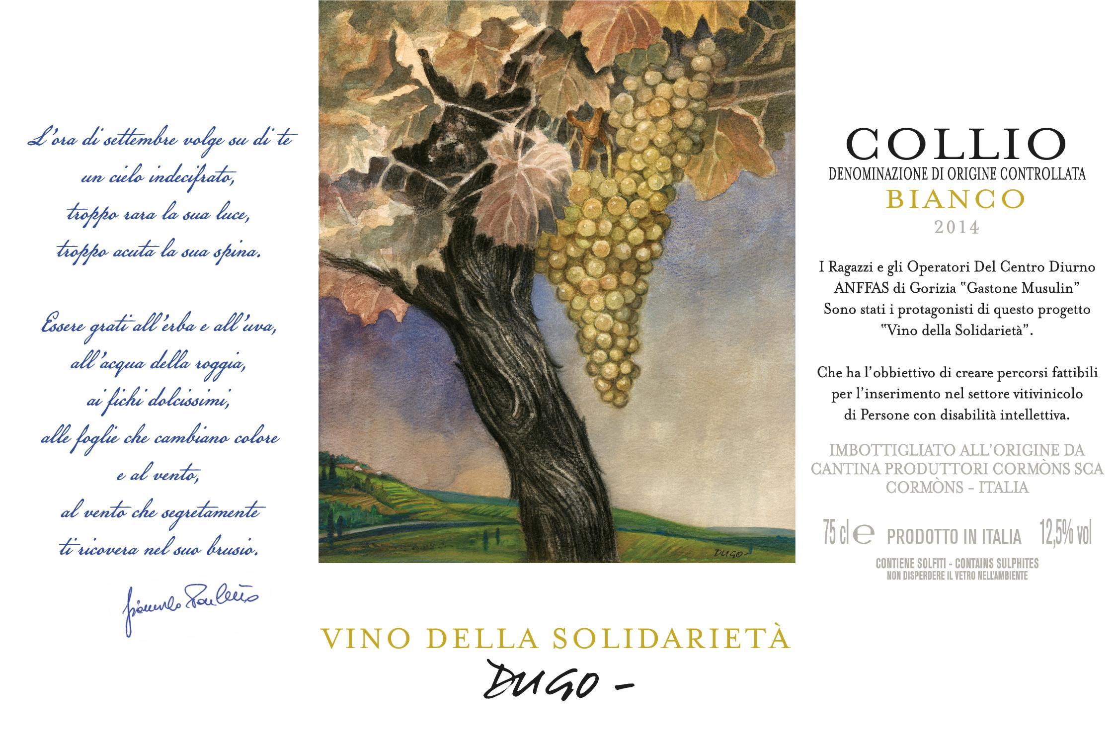 etichetta_vino_solidarietà-2015